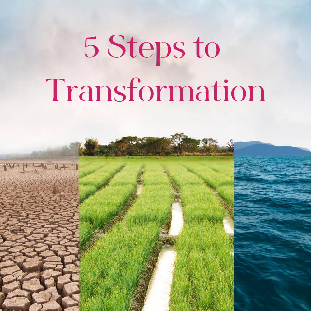 5 Step Transformation Process